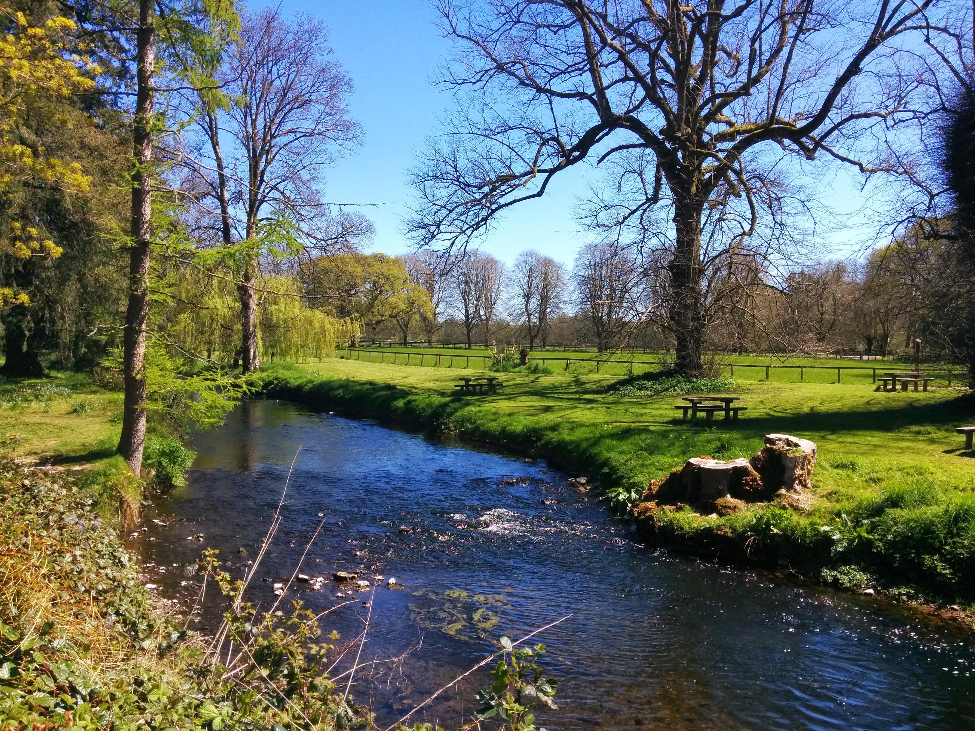 River at the Blarney Castle Estate